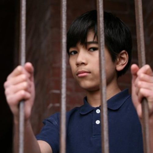 An Overview of the Juvenile Justice System